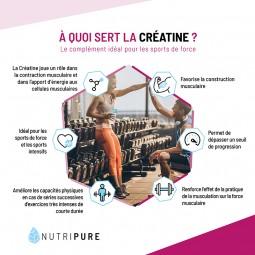 creatine musculation